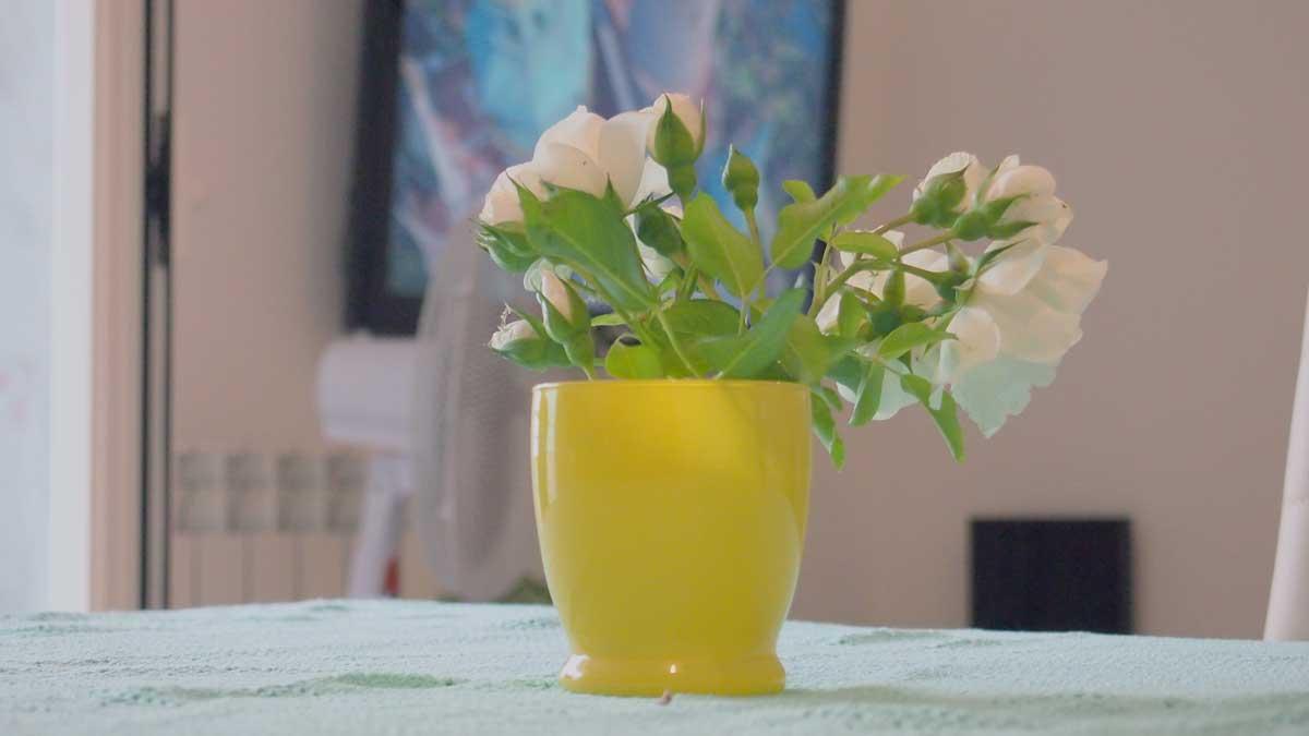 親戚の家の食卓に飾られた白い花
